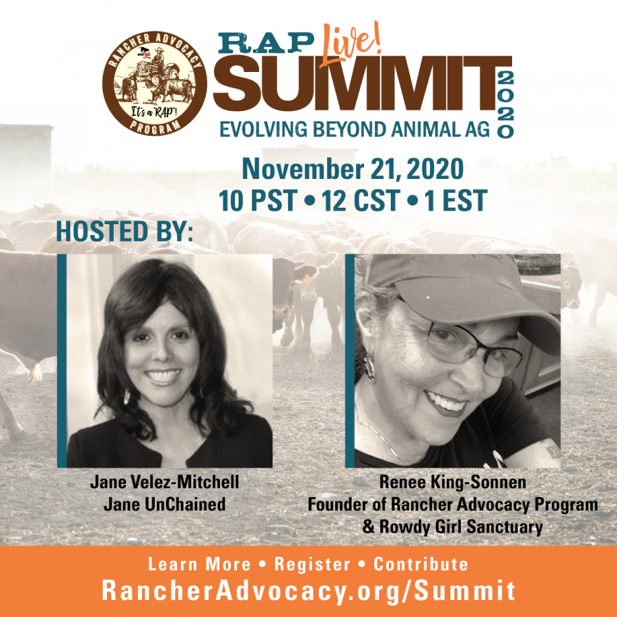 SUMMIT THIS SATURDAY: EVOLVING BEYOND ANIMAL AGRICULTURE