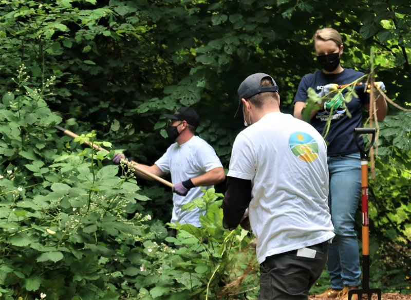 On World Environment Day 2021, volunteers from the Seattle Church of Scientology helped restore Kinnear Park by digging up and chopping out invasive species.