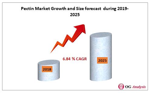 Pectin Market Growth and Size forecast  during 2019-2025