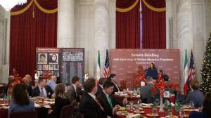 Senator Martha McSally (R-AZ) at senate OIAC Briefing on Iran
