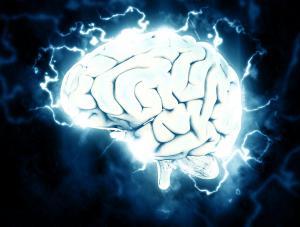 Graphic representation of the brain