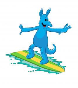AARDY Insurance Surfing