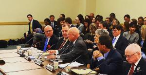 AWA executive director Marty Irby testifying at a House hearing on H.R. 1754 in January 2020