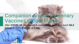 Companion Animal Veterinary Vaccines Market Report 2020-30: Covid 19 Growth And Change