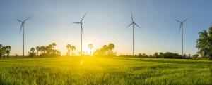 Petraco Oil Company SA shows commitment to sustainability