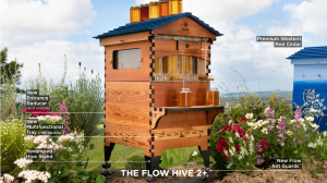 The new features of the Flow Hive 2+