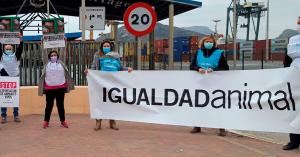 Animal Equality protesting live animal transport in Spain.