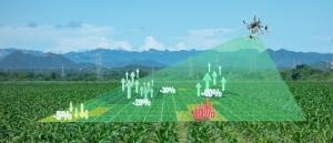Smart reforestation