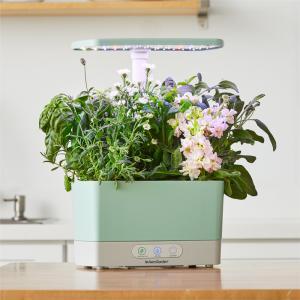 Image of the Harvest Sage Wellness Bundle from AeroGarden