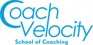 coach velocity school of coaching for professionals
