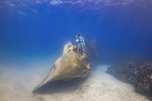 Coral Tomascik poses 60 feet below the surface for photographer Jason Washington