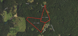 parcels of 16.7± and 25.7± acres of wooded land in Madison County VA