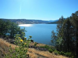 Picturesque Copco Lake on the Klamath River is critical habitat to numerous endangered species of flora and fauna