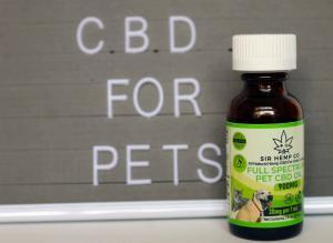CBD for cats, CBD for dogs 900mg full spectrum oil