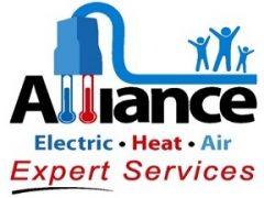 Alliance Expert Services Logo
