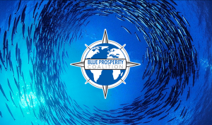 Blue Prosperity Coalition Logo School of Fish