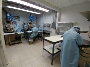 Medical Device Insert Molding