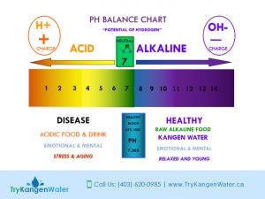 Try Kangen Water PH Level of Water