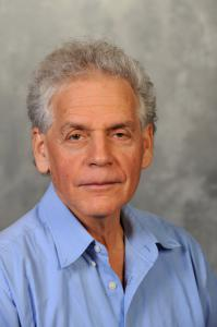 Prof. Reshef Tenne is most notable for his prediction in 1992, following the discovery of carbon nanotubes that nanoparticles of inorganic compounds with layered structures